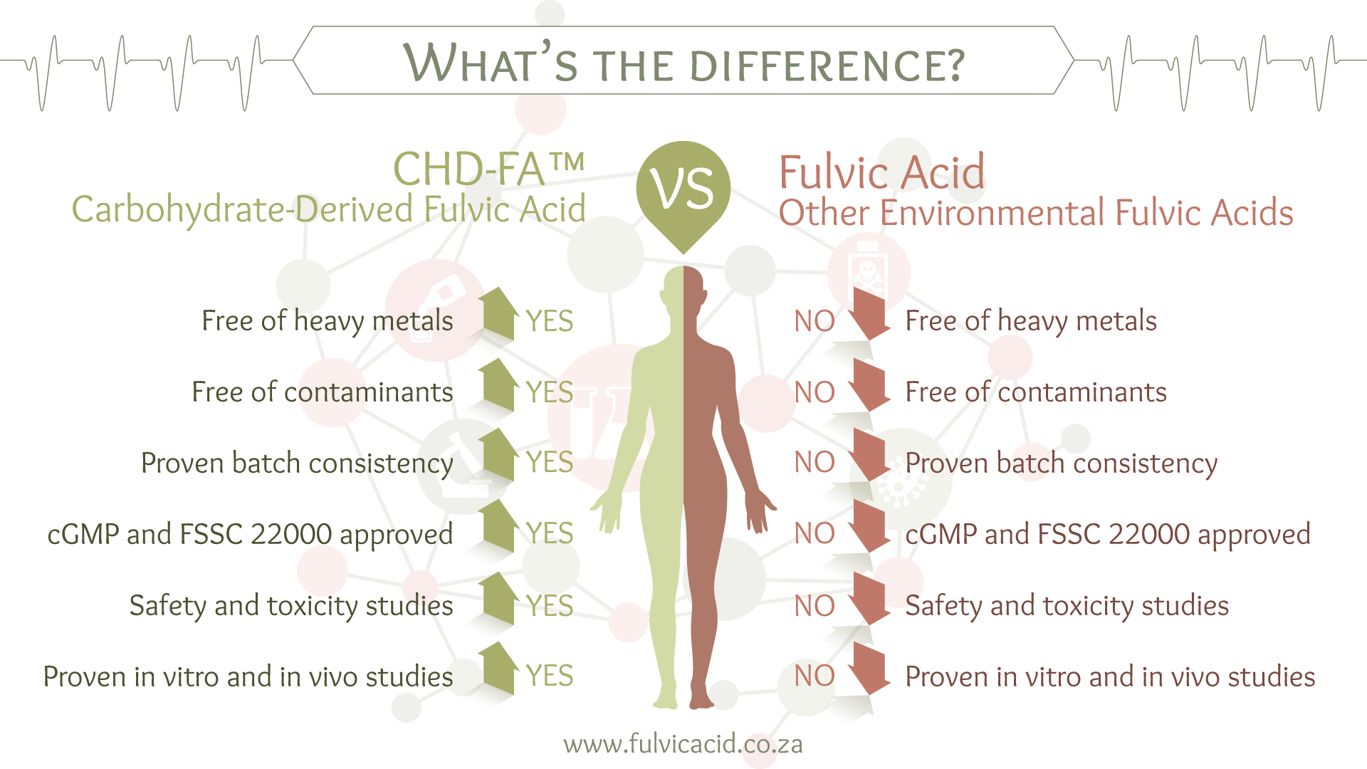 CHD-FA vs. Environmental Fulvic Acid